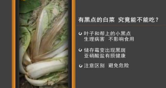 哪种白菜不能吃