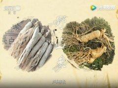 20170314健康之路视频和笔记:于振宣,人参应该怎么吃,冬虫夏草