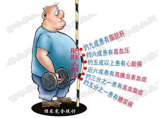 肥胖的危害