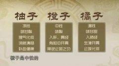 20170616医生开讲视频和笔记:韦云,金桔酱,金桔,青皮,陈皮,止咳