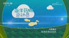 20170817健康之路视频和笔记:朱世杰,乌贼骨,海螵蛸,瓦楞子,牡蛎