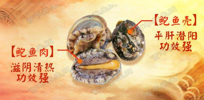 鲍鱼壳降低血压的神奇功效