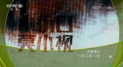 20180206健康之路视频和笔记:徐旭英,糖尿病,痛风,三子除痹汤