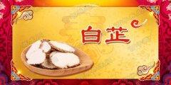 20180222养生堂视频和笔记:徐荣谦,白芍,白芷,白菊,高血压,高血脂