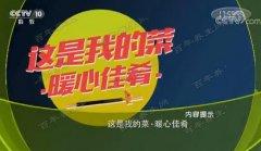 20180224齐乐娱乐视频和笔记:张晋,猪肝,鸭血,腊八蒜熘肝尖的制作