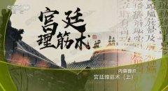 20180309健康之路视频和笔记:王建军,刘颖,宫廷理筋术,风寒,腰疼