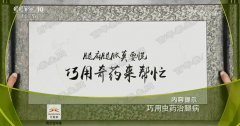 20180716龙都国际娱乐视频和笔记:刘继前,虫药,水蛭,蚕沙,蝼蛄,五苓散