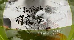 20180724健康之路视频和笔记:孔薇,红参姜皮茶,真武汤,橙汁双皮