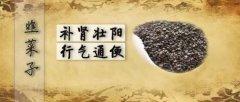 20180924医生开讲视频和笔记:张晋,韭菜炒鸡蛋虾仁,醋泡韭菜子