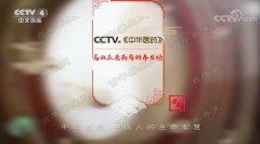 20180929中华医药视频和笔记:伍炳彩,头晕,头痛,足太阳膀胱经