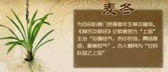 20181030医生开讲视频和笔记:吴圣贤,益胃汤,咳嗽,麦冬茶,二冬膏