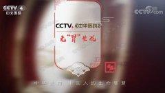 20190330中华医药视频和笔记:李萍萍,李东垣,元气,补中益气汤