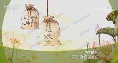 20190609健康之路视频和笔记:黄彬,活血化瘀药枕,乳香止痛方