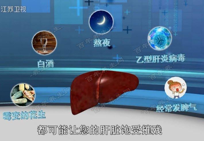 饱受摧残的肝脏