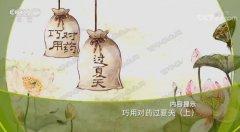 20190712健康之路视频和笔记:刘剑锋,对药,感冒,热伤风,空调病