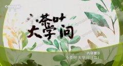 20190813健康之路视频和笔记:杨志敏,白茶,白茶药枕,白毫银针