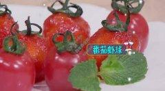 20200522家政女皇视频和笔记:番茄虾球,番茄鱼柳的制作方法
