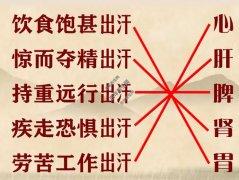 20200811X诊所视频和笔记:董耀荣,出汗,黄芪红枣猪肉汤,热射病