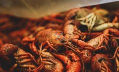 20200820X诊所视频和笔记:朱珍妮,吃虾正当时,横纹肌溶解症