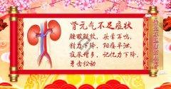 20201125养生堂视频和笔记:吴旸,心悸,胸痛,肾虚,胸闷,心肌缺血