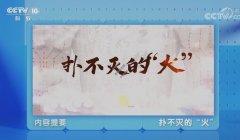 20210125健康之路视频和笔记:陈晓锋,上热下寒,痰湿阻滞,交泰丸