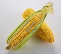 吃什么可以补充维生素B?这几类食物和汤臣倍健维生素B族片