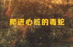 20210407养生堂视频和笔记:马潞林,尿酸,肾癌,腰痛,痛风,果糖