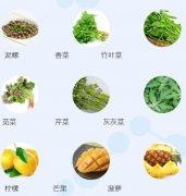 20210708饮食养生汇视频和笔记:陈柳青,过敏,螨虫,水肿,皮炎