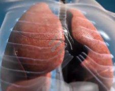 20211019X诊所视频和笔记:陆舜,肺癌,肺癌筛查,靶向治疗